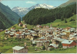 PEJO PAESE 1987 CARTOLINA POST CARD PANORAMA VIEW  VIAGGIATA - Italië