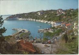 DUINO TRIESTE 1987 CARTOLINA POST CARD IL PORTO PORT  VIAGGIATA - Trieste