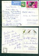 KENYA  Lot De 2 Cartes Postales Affranchies Pour La France, En  1984 ET 1979  -  LM19402 - Kenya (1963-...)