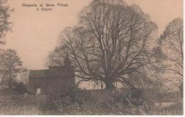 Chapelle et Gros Tilleul � Doyon