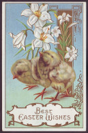 BEST EASTER WISHES. TWO CHICKS AND LILY FLOWERS (Nice Embossed, 1900's) - Pasen