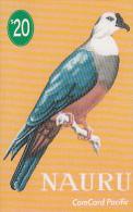 NAURU - Micronesian Pigeon, First Issue $20, Tirage 1200, Sample - Nauru