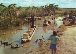 CPSM ANIMÉE - MADAGASCAR TANANARIVE : PIROGUIERS (1971) - Madagascar