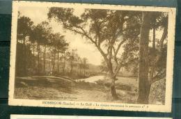 Hossegor ( Landes )  - Le Golf - La Riviere Traversant Le Parcours N°3 - EAA91 - Hossegor