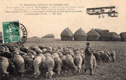 """Série --Le  Premier Voyage En Aéroplane """" -- FARMAN Dans La Plaine De SILLERY - Autres Communes"""
