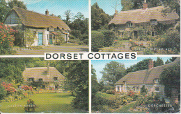PC Dorset Cottages - Multiview - 1978 (6431) - England