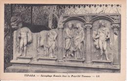 CPA Tipaza - Sarcophage Romain Dans La Propriété Tremaux (6438) - Algerien