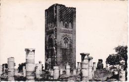CPA Rabat - Ruines De Tour Hassan - 1951 (6444) - Rabat