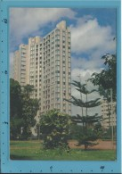 CAMPO GRANDE - Palácio Do Comércio - BRAZIL -  Ed. Brasil Turistico N.º 25 - 2 Scans - Campo Grande