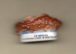 Fève Brillante MEROU Poisson WWF Champions - Animaux