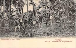 Congo - Ouvriers De La Plantation - Congo - Brazzaville