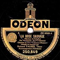 78 Trs - ODEON 250.849 - état TB - RICHARD TAUBER Ténor - LA ROSE SAUVAGE - FOI AU PRINTEMPS - 78 Rpm - Schellackplatten