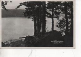 Cpsm  Du Lac Pavin  N°217 - Non Classificati