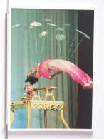 CIRQUE ACROBATIQUE DE PEKIN - 1990 - TROUPE DE HANGZHOU - 300 EX. - ETAT NEUF - Cirque