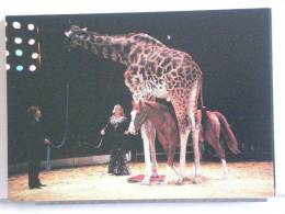 CHRISTEL SEMBAT KRONE - CIRQUE KRONE 1989 - 300 EX. - ETAT NEUF - Cirque