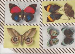 4AG279 Lot De 4 Cartes PAPILLONS 2 SCANS - Papillons