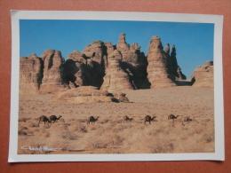 34745 PC: SAUDI ARABIA: Wind Erosion In The Desert (Al Ula Region) Kingdom Of Saudu Arabia. - Saudi Arabia