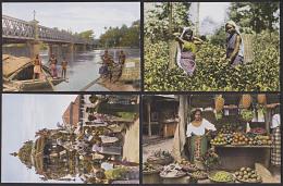 Indien Früchtestand In LangaloarTeepflückerin Hindu-Tempelwagen Viktoriabrücke In Lo Lambo, Ansichten Für Schulbuch - India