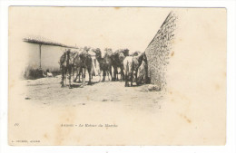 ALGERIE  /  AUMALE  /  LE  RETOUR  DU  MARCHE  ( Chameaux Et Dromadaires ) /  Edit.  J. GEISER  N° 10 - Otras Ciudades