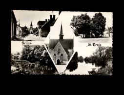41 - SELLES-SAINT-DENIS - Multi Vues - France