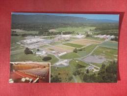 - New York> 80 Miles NE Of NYC  Watchtower Farm & Factory  Ref  1387 - Ohne Zuordnung