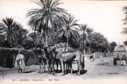 BISKRA (Algerien) - Chamelier 1905? - Algérie