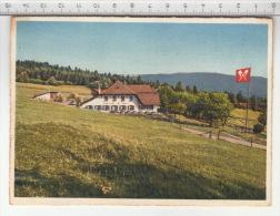 Magglingen / Macolin - Restaurant Hohmatt - Restaurants