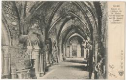 Gand. Ruines De L'Abbaye  St.Bavon. Galerie Souterraine. - Gent