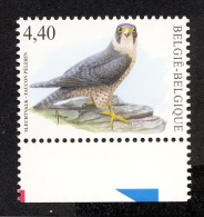 Belg. 2008 - COB N° 3751 ** - Faucon Pélerin - Unused Stamps