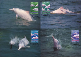 (WWF-263) Maxi Maximum Cards / Maxicard W.W.F. Hongkong Hong Kong Dolphin 1999 - Maximum Cards
