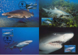 (WWF-266) Maxi Maximum Cards / Maxicard W.W.F. Tuvalu Shark 2000 - Maximum Cards