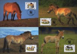 (WWF-277) Maxi Maximum Cards / Maxicard W.W.F. Mongolia Horse 2000 - Maximum Cards