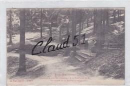 SAINT DIE (88)Dans Le Massif De L'Ormont-A La Fontaine Abiès-Au Dessus De La Goutte Du Rupt - Saint Die
