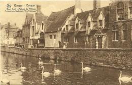 Old Picturecard BruggesQuai Vert - Maison Du Pelican, Groene Rei - Godshuis De Pelikaan - Brugge