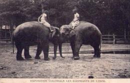 Animaux : Les éléphants De L'Inde - Expostion Coloniale  (vierge) - Éléphants