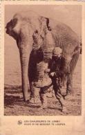 """Animaux : éléphants - Cpas Belgique + Pub Chocolat  """"Martougin"""" Au Verso (vierge) - Éléphants"""