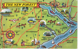 PC The New Forest  (6589) - England