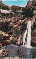 CPSM Tlemcen - Cascade De L'Oued Mefrouch-El-Ourit (6610) - Tlemcen