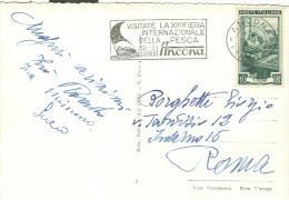 ANCONA, FIERA  INTERNAZIONALE PESCA, 1952, TIMBRO POSTE ANCONA SU CARTOLINA B/N VIAGGIATA 1952, - Holidays & Tourism