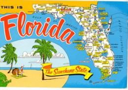C P M---ETATS-UNIS------FLORIDA   THE SUNSHINE STATE--voir 2 Scans - Etats-Unis