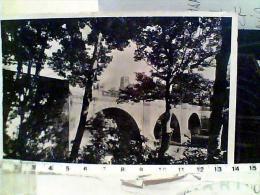 ENGLAND DURHAM CATHEDRAL E  BRIDGE CHIESE  E PONTE  VB1955  EL7196 - Durham