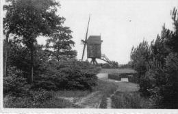 Keerbergen : Le Moulin (écrite) - Belgique