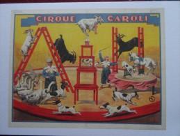Cpm Cirque Caroli Animaux - 5 - 99 Postkaarten