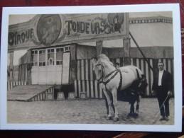 Cpm Cirque Artistes Dressage Tondeurs - 5 - 99 Postkaarten