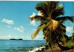 C P M-----ANTILLES TOURISTIQUES-----GREVE CARAI'BE -----voir 2 Scans - Antilles