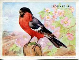 Collection Biscottes Clément : Bouvreuil - Vecchi Documenti