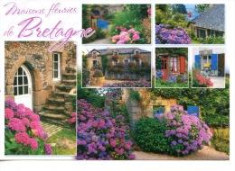 Maisons Fleuries De Bretagne Multivues (éd Jack) Hortensias - Bretagne