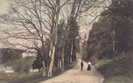 Beaumont - Paysage (animée, Colorisée, Ed. Crevecoeur) - Beaumont