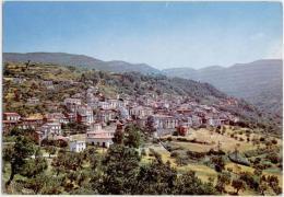 FALERNA, PANORAMA,  FORMATO GRANDE     **** - Catanzaro