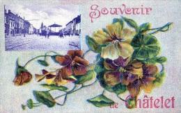 Chatelet : Souvenir De.... - Carte Couleur (1924) - Châtelet
